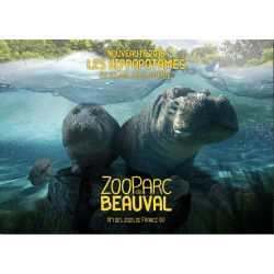 Billet CE 1 Jour Enfant -ZooParc de Beauval - 31/01/2018